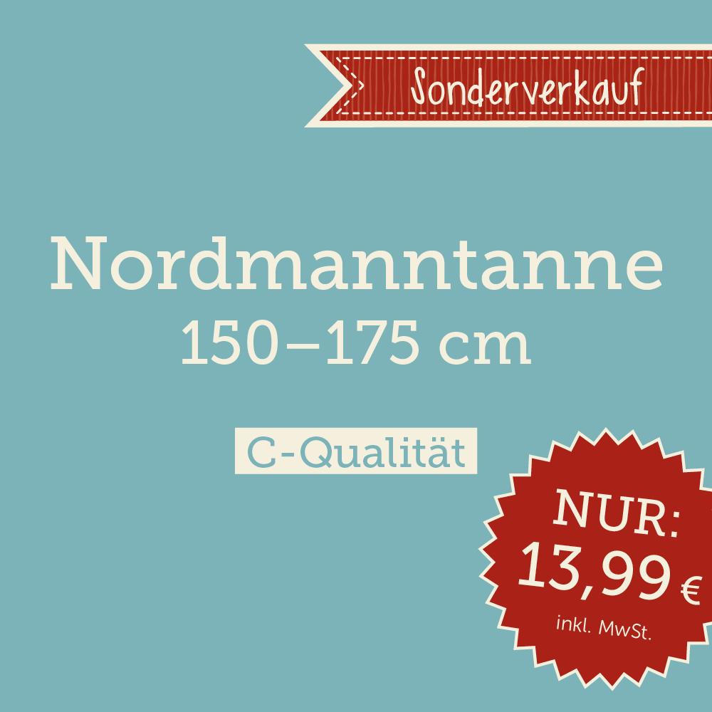nordmanntannen ab 13 99 eur online bestellen santa fidi weihnachtsb ume online kaufen. Black Bedroom Furniture Sets. Home Design Ideas