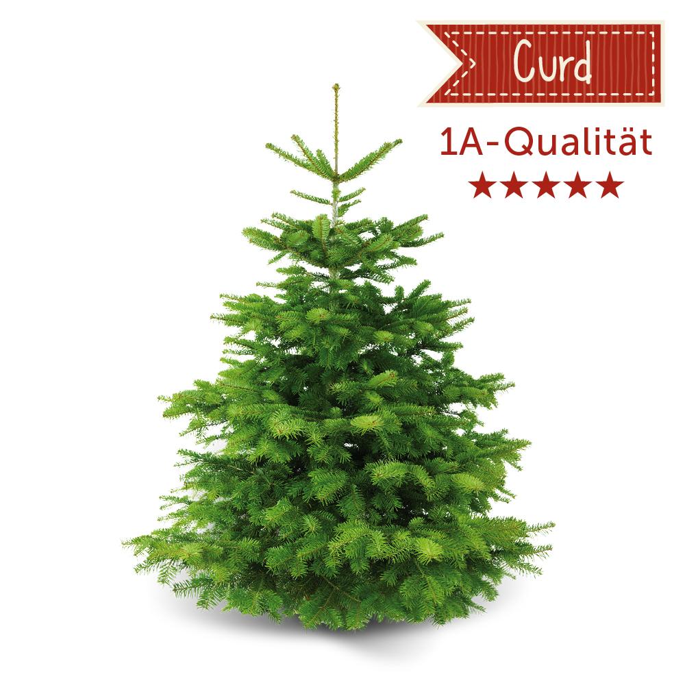 nordmanntanne curd ca 175 cm weihnachtsb ume santa fidi weihnachtsb ume online kaufen. Black Bedroom Furniture Sets. Home Design Ideas