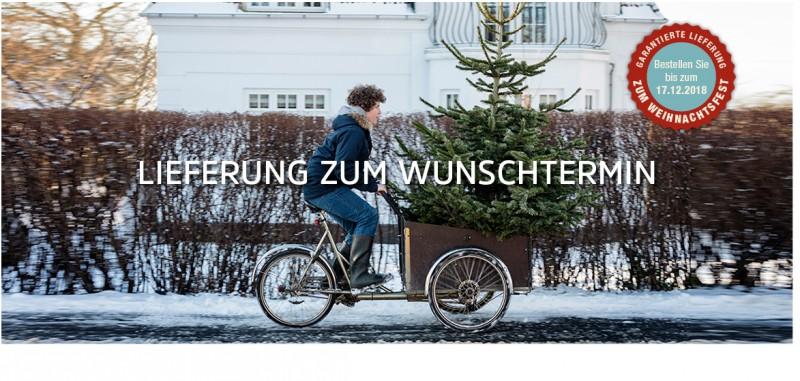 Santa Fidi Weihnachtsbaume Online Kaufen